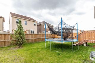 Photo 33: 184 WINDFORD Rise SW: Airdrie Detached for sale : MLS®# C4305608