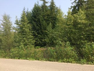 Photo 10: Lot 22 Ridge Road: Eagle Bay Land Only for sale (Shuswap)  : MLS®# 10167444