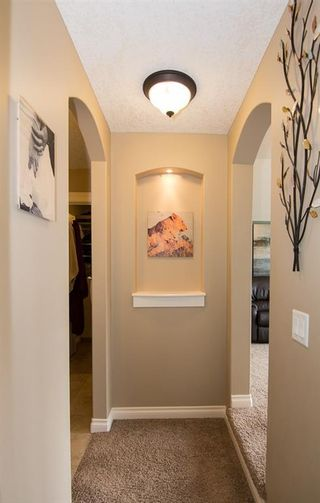 Photo 22: 231 COOPERS Hill SW: Airdrie Detached for sale : MLS®# A1085378