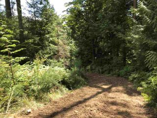 Photo 29: Lot 1 MARINE Drive in Granthams Landing: Gibsons & Area Land for sale (Sunshine Coast)  : MLS®# R2535798