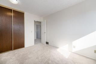 Photo 23: 452 Woodside Road SW in Calgary: Woodlands Detached for sale : MLS®# A1147030