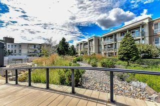 Photo 20: 233 15850 26 AVENUE in Surrey: Grandview Surrey Condo for sale (South Surrey White Rock)  : MLS®# R2090464