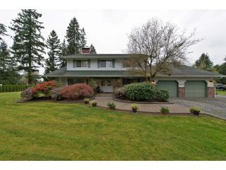 Photo 1: 4813 241 ST in Langley: Salmon River House for sale : MLS®# F1437603