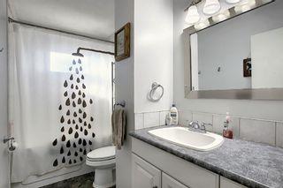 Photo 28: 1711 65 Street NE in Calgary: Pineridge Detached for sale : MLS®# A1038776