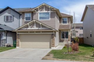 Main Photo: 227 Chapalina Terrace SE in Calgary: Chaparral Detached for sale : MLS®# A1103270