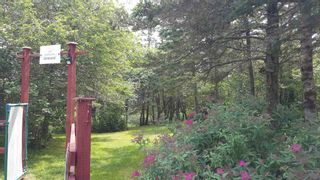 Photo 3: Lot 1 Tommy Branch in Little River: 401-Digby County Vacant Land for sale (Annapolis Valley)  : MLS®# 202101348