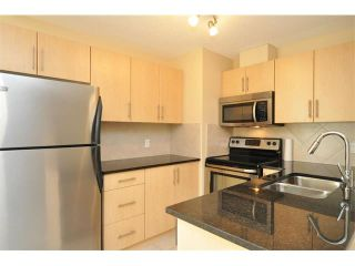 Photo 8: 1706 325 3 Street SE in Calgary: Downtown East Village Condo for sale : MLS®# C4018857
