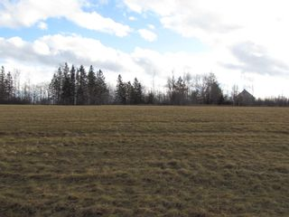 Photo 8: 2127 Highway 236 in Mosherville: 403-Hants County Vacant Land for sale (Annapolis Valley)  : MLS®# 202100967
