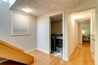 Photo 32: 10408 Fairmount Drive SE in Calgary: Willow Park Detached for sale : MLS®# A1066114