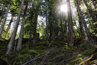 Photo 29: 1706 Blind Bay Road: Blind Bay Vacant Land for sale (South Shuswap)  : MLS®# 10185440