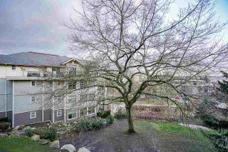 """Photo 31: 205 245 ROSS Drive in New Westminster: Fraserview NW Condo for sale in """"GROVE AT VICTORIA HILL"""" : MLS®# R2543639"""