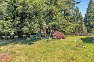 Photo 7: 11410 207 Street in Maple Ridge: Southwest Maple Ridge House for sale : MLS®# R2587693