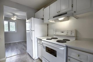 Photo 6: 18 12 TEMPLEWOOD Drive NE in Calgary: Temple Row/Townhouse for sale : MLS®# A1021832