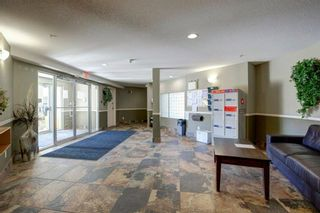 Photo 4: 4421 4975 130 Avenue SE in Calgary: McKenzie Towne Apartment for sale : MLS®# A1020076