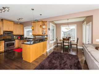 Photo 6: 241 Springmere Way: Chestermere House for sale : MLS®# C4005617