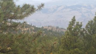 Photo 9: #Lot 34 490 SASQUATCH Trail, in Osoyoos: Vacant Land for sale : MLS®# 191747