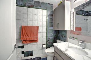 Photo 37: 6511 24 Avenue NE in Calgary: Pineridge Detached for sale : MLS®# A1152283