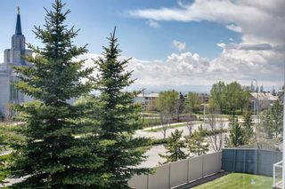 Photo 48: 94 Royal Elm Way NW in Calgary: Royal Oak Detached for sale : MLS®# A1107041