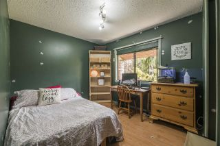 Photo 13: 19903 46A Avenue in Langley: Langley City House for sale : MLS®# R2557011