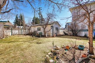 Photo 46: 116 Bowers Street NE: Airdrie Detached for sale : MLS®# A1095413