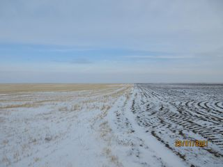 Photo 11: 1,596.24 Acres- Parry, SK Area - RM Caledonia # 99 - Farmland For Sale