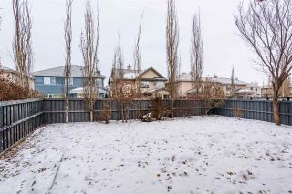 Photo 41: 3109 TREDGER Place in Edmonton: Zone 14 House for sale : MLS®# E4223138