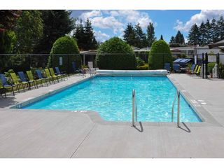 """Photo 18: 141 1840 160 Street in Surrey: King George Corridor Manufactured Home for sale in """"BREAKAWAY BAYS"""" (South Surrey White Rock)  : MLS®# R2367996"""