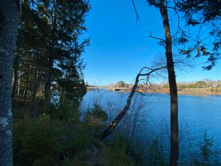 Photo 12: Saunders Road in Durham: 108-Rural Pictou County Vacant Land for sale (Northern Region)  : MLS®# 202108674