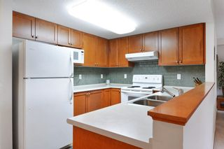 """Photo 7: 309 8880 202 Street in Langley: Walnut Grove Condo for sale in """"The Residence"""" : MLS®# R2247725"""