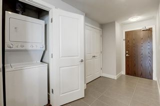 Photo 20: 2805 99 SPRUCE Place SW in Calgary: Spruce Cliff Apartment for sale : MLS®# A1020755