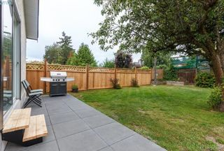 Photo 13: 2850 Rockwell Ave in VICTORIA: SW Gorge House for sale (Saanich West)  : MLS®# 762594