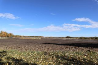 Photo 1: TWP 491 RR 273: Rural Leduc County Rural Land/Vacant Lot for sale : MLS®# E4264523