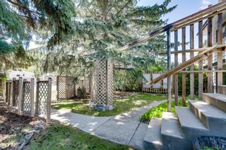 Photo 34: 8008 33 Avenue NW in Calgary: Bowness Detached for sale : MLS®# A1128426