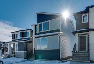 Photo 2: 286 Cornerstone Crescent NE in Calgary: Cornerstone Detached for sale : MLS®# A1075287