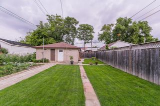 Photo 47: 262 Ryding Ave in Toronto: Junction Area Freehold for sale (Toronto W02)  : MLS®# W4544142