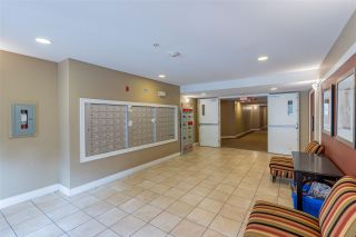 Photo 4: 420 30525 CARDINAL Avenue in Abbotsford: Abbotsford West Condo for sale : MLS®# R2529106
