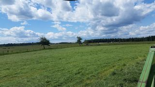 Photo 17: ON Highway 27: Rural Mountain View County Land for sale : MLS®# A1012341