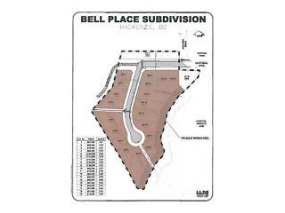"""Photo 9: LOT 16 BELL Place in Mackenzie: Mackenzie -Town Land for sale in """"BELL PLACE"""" (Mackenzie (Zone 69))  : MLS®# N227309"""
