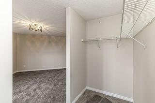Photo 15: 329 16221 95 Street in Edmonton: Zone 28 Condo for sale : MLS®# E4250515