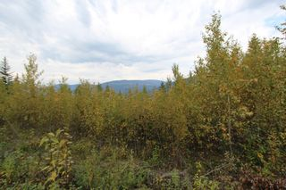 Photo 9: Lot 81 Sunset Drive: Eagle Bay Land Only for sale (Shuswap)  : MLS®# 10186644