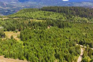 Photo 15: LOT 4 WILDERNESS ROAD in Hope: Agriculture for sale : MLS®# C8034954