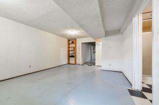 Photo 29: 10220 166 Avenue in Edmonton: Zone 27 House for sale : MLS®# E4265876