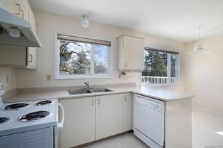 Photo 14: 4208 Morris Dr in : SE Lake Hill House for sale (Saanich East)  : MLS®# 871625