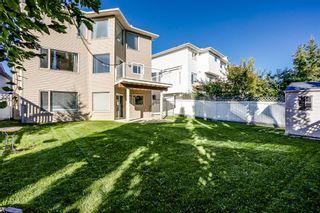 Photo 34: 232 Citadel Park NW in Calgary: Citadel Detached for sale : MLS®# A1144556