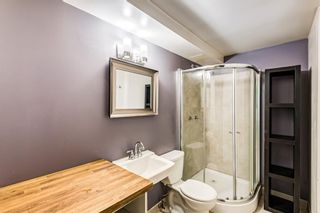 Photo 19: 1028 21 Avenue SE in Calgary: Ramsay Detached for sale : MLS®# A1116791