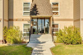 Main Photo: 302 10528 29 Avenue in Edmonton: Zone 16 Condo for sale : MLS®# E4262854