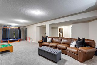 Photo 18: 266 Banister Drive: Okotoks Residential for sale : MLS®# A1070083