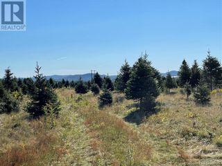 Photo 34: - Saint David Ridge in St. Stephen: Vacant Land for sale : MLS®# NB063465