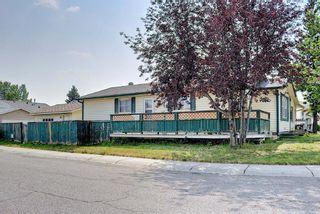 Photo 41: 180 Castledale Way NE in Calgary: Castleridge Detached for sale : MLS®# A1135509