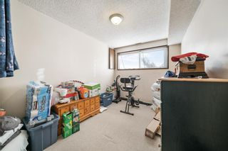 Photo 17: 4904 Nesbitt Road NW in Calgary: North Haven Semi Detached for sale : MLS®# A1065106